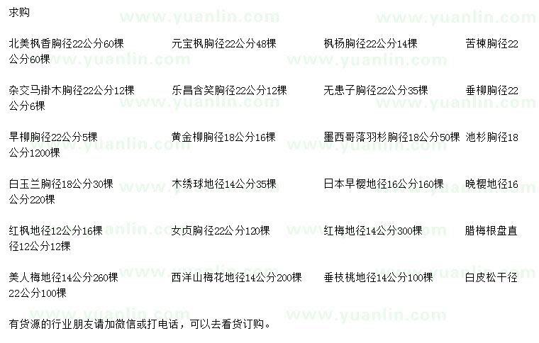 国产亚洲Av在线北美枫香、元宝枫、枫杨等