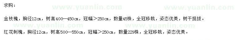 求购胸径12公分金枝槐、红花刺槐